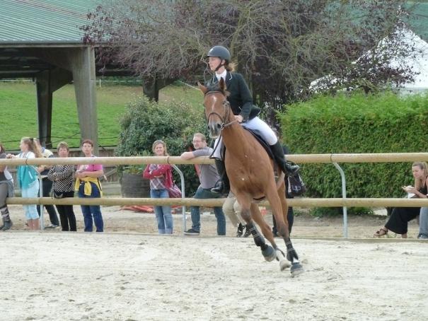 centre equestre 78 yvelines