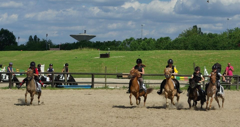 Faire du cheval dans les yvelines for A voir dans les yvelines